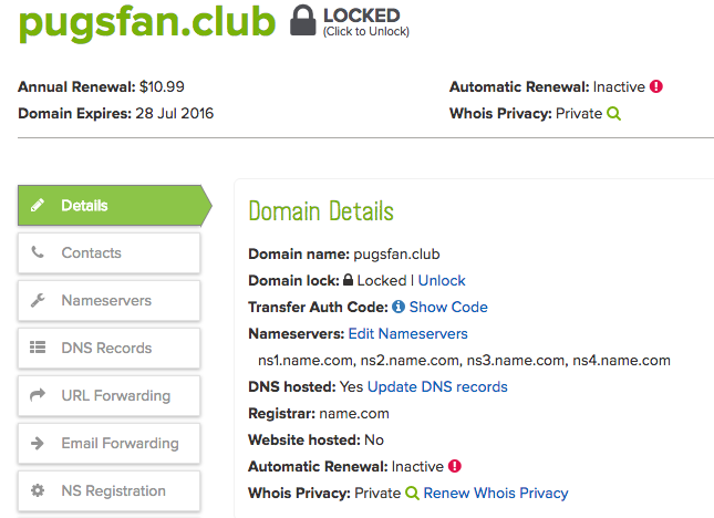domain details screenshot