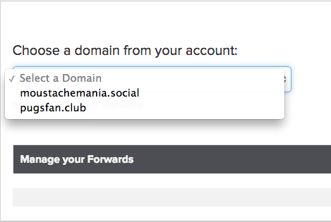 select a forwarding domain screenshot
