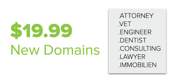 $19.99 new domains: .attorney, .vet, .engineer, .dentist, .consulting, .lawyer, .immobilien